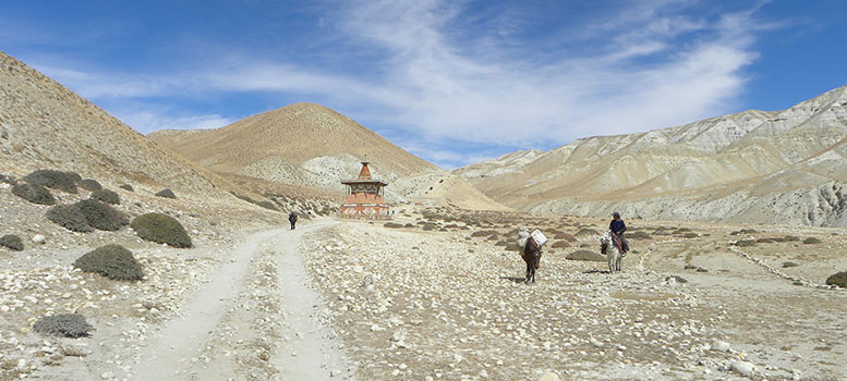 Upper Mustang Trek, Upper Mustang Trekking, Trekking in Upper Mustang Lomanthang